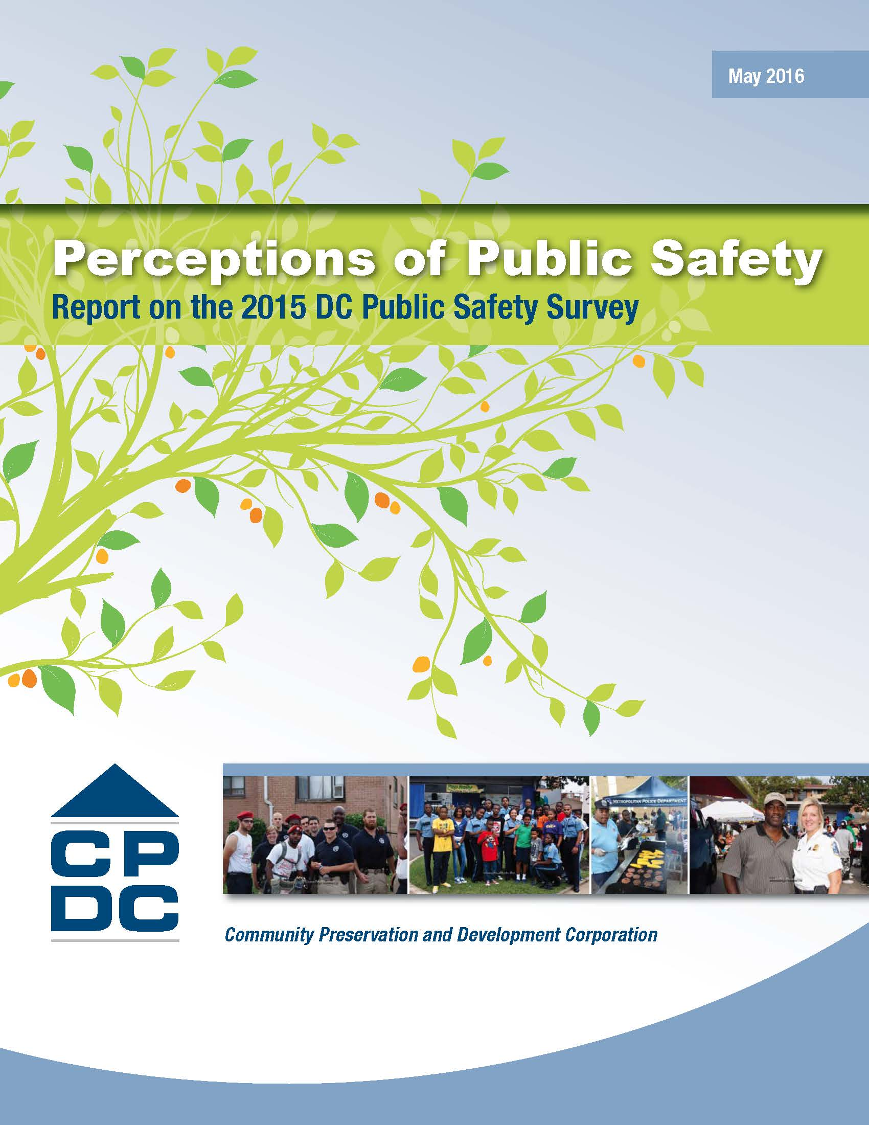 Perceptions of Public Safety Executive Summary